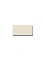 Azulejo tipo metro liso ivory brillo 10X20 cm. El clásico azulejo para decoraciones retro o vintage o incluso modernas o minimalistas. Primera calidad.