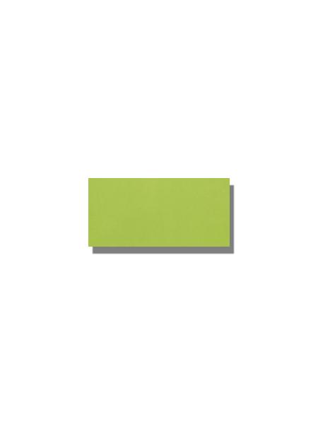 Azulejo tipo metro liso verde brillo 10X20 cm. El clásico azulejo para decoraciones retro o vintage o incluso modernas o minimalistas. Primera calidad.