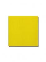 Revestimiento pasta roja liso Limón brillo 20x20 cm. Un azulejo clásico válido para revestir paredes con 14 colores disponibles en dos acabados.
