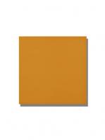 Revestimiento pasta roja liso Naranja brillo 20x20 cm. Un azulejo clásico válido para revestir paredes con 14 colores disponibles en dos acabados.