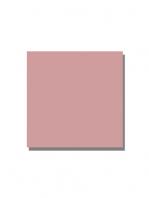 Revestimiento pasta roja liso Rosa fuerte mate 20x20 cm. Un azulejo clásico válido para revestir paredes con 14 colores disponibles en dos acabados.