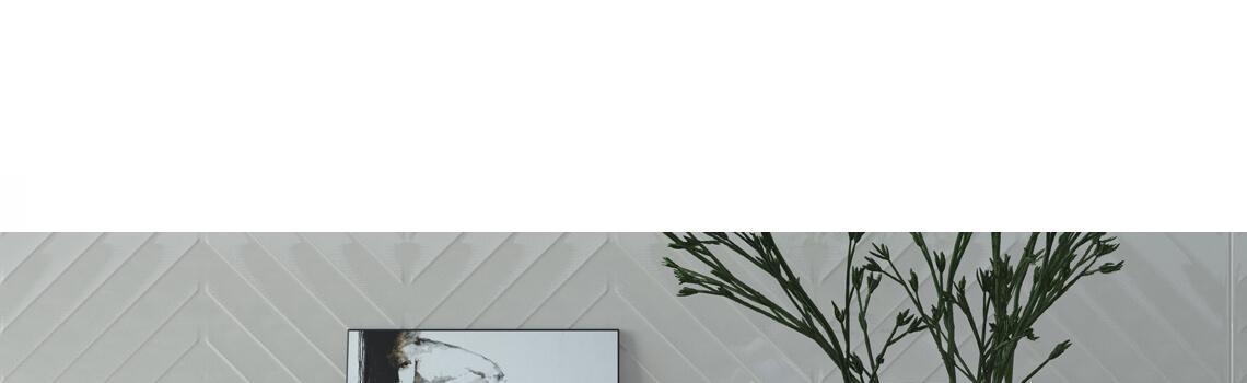 Revestimiento pasta blanca rectificado blanco brillo 33,3x100 cm.